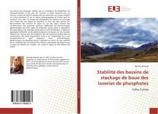 Couverture de Stabilité des bassins de stockage de boue des laveries de phosphates