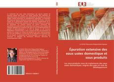 Épuration extensive des eaux usées domestique et sous produits kitap kapağı