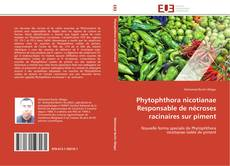 Bookcover of Phytophthora nicotianae Responsable de nécroses racinaires sur piment