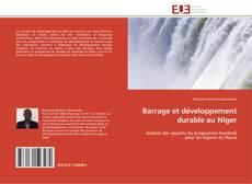 Bookcover of Barrage et développement durable au Niger