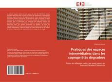Portada del libro de Pratiques des espaces intermédiaires dans les copropriétés dégradées