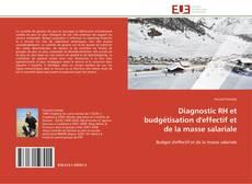 Bookcover of Diagnostic RH et budgétisation d'effectif et de la masse salariale
