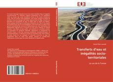 Couverture de Transferts d'eau et inégalités socio-territoriales