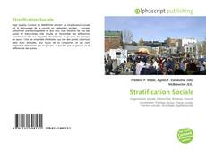 Bookcover of Stratification Sociale