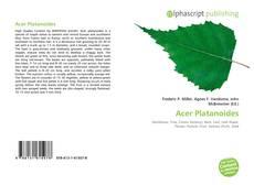 Обложка Acer Platanoides