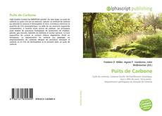 Bookcover of Puits de Carbone