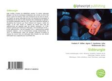 Bookcover of Sidérurgie