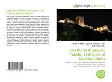 Bookcover of José María Álvarez de Toledo, 15th Duke of Medina Sidonia