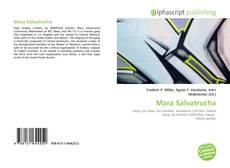 Mara Salvatrucha的封面