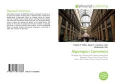 Bookcover of Algonquin Commons