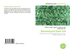 Обложка Mesenchymal Stem Cell