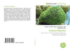 Buchcover von Calcium Reactor