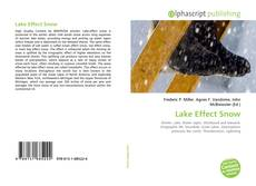 Capa do livro de Lake Effect Snow