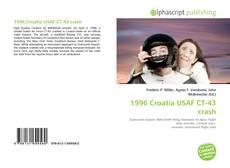 Bookcover of 1996 Croatia USAF CT-43 crash