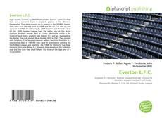 Capa do livro de Everton L.F.C.