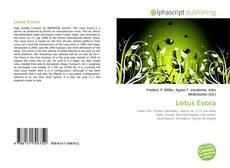 Lotus Evora的封面