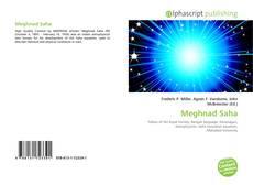Buchcover von Meghnad Saha
