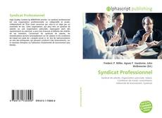 Bookcover of Syndicat Professionnel