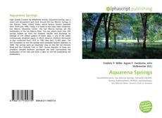 Buchcover von Aquarena Springs