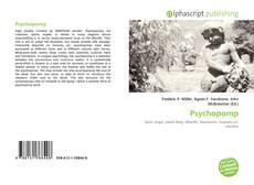 Psychopomp kitap kapağı