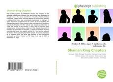Borítókép a  Shaman King Chapters - hoz