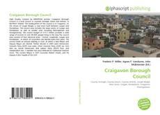 Craigavon Borough Council kitap kapağı