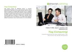 Bookcover of Flag (Computing)