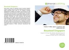 Bookcover of Boustead Singapore