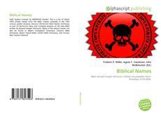 Copertina di Biblical Names