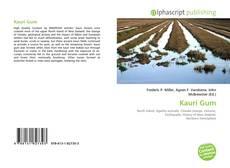 Kauri Gum的封面