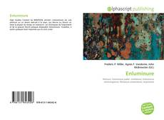 Bookcover of Enluminure