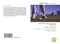 Portada del libro de Joey Sindelar
