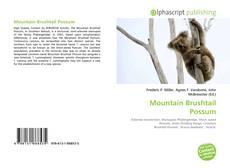 Обложка Mountain Brushtail Possum