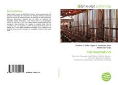 Borítókép a  Fermentation - hoz