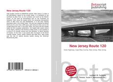 Couverture de New Jersey Route 120