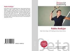 Portada del libro de Pablo Andújar