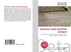 Buchcover von Katowice Trade Hall Roof Collapse