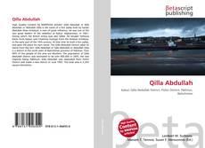Bookcover of Qilla Abdullah