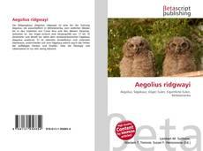 Aegolius ridgwayi kitap kapağı