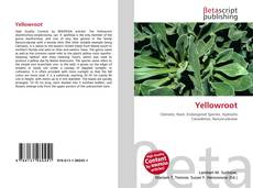 Yellowroot kitap kapağı