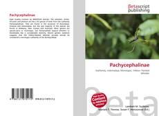Pachycephalinae kitap kapağı