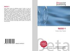 Bookcover of NKX6-1