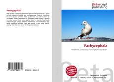 Pachycephala kitap kapağı