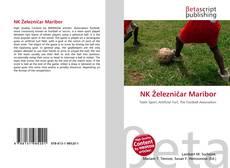 Buchcover von NK Železničar Maribor