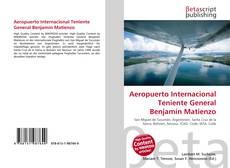 Bookcover of Aeropuerto Internacional Teniente General Benjamín Matienzo