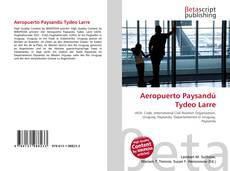 Portada del libro de Aeropuerto Paysandú Tydeo Larre