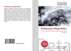 Bookcover of Podocarpus Magnifolius