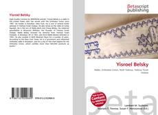 Bookcover of Yisroel Belsky