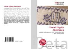 Bookcover of Yisroel Eliyahu Weintraub