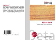 Aghlabiden kitap kapağı